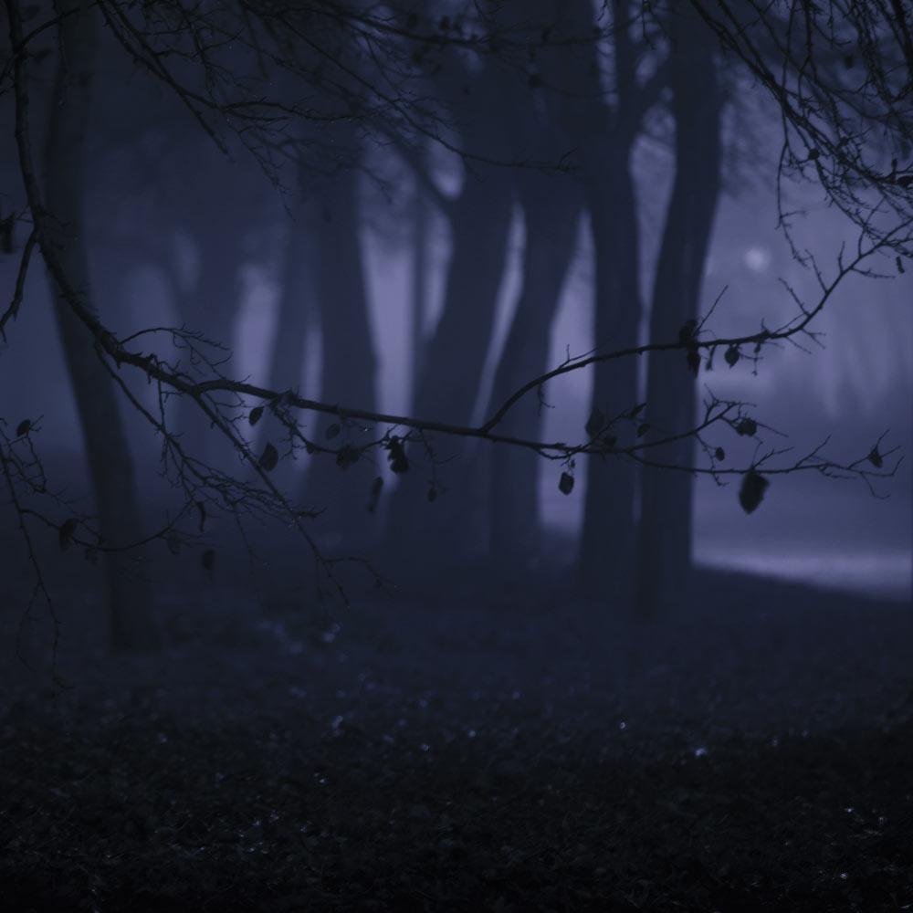 Ночная Набережная в Волгограде