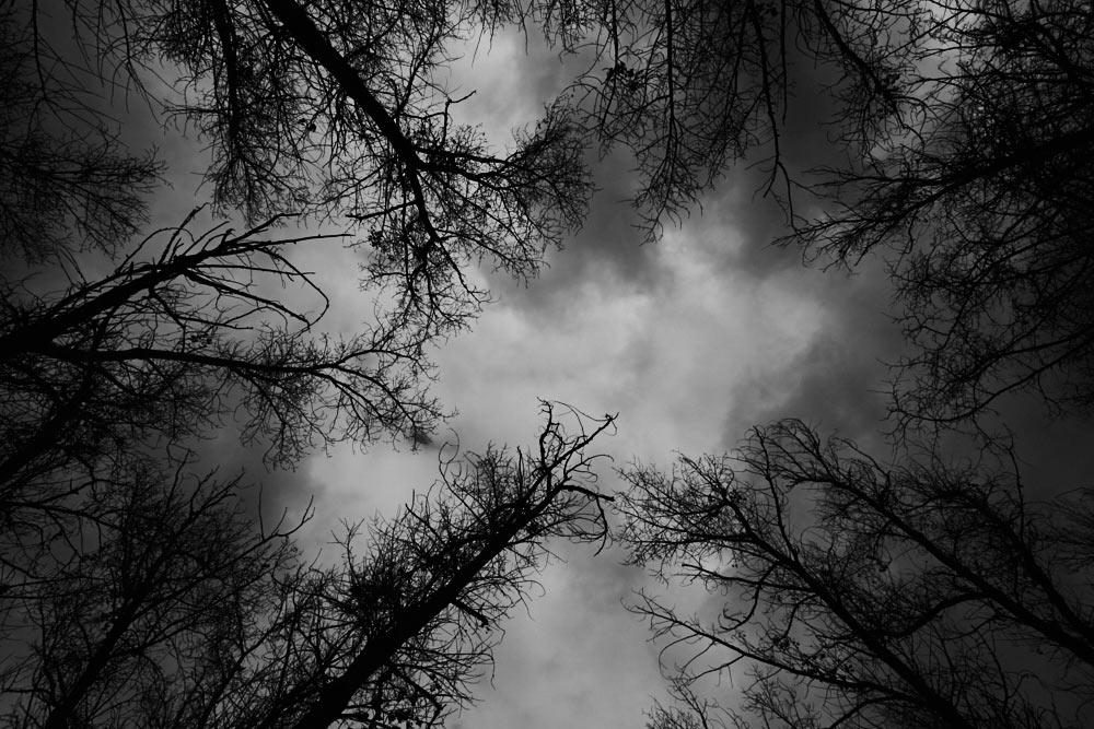 Ноябрьское небо