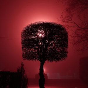 Ночная Набережная в Волгограде в тумане
