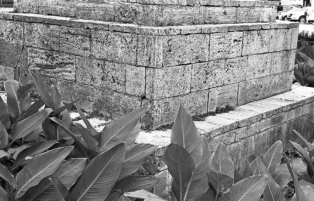 Фотоплёнка Тасма НК-2 на Olympus OM-4 + Zuiko 50 f1.8