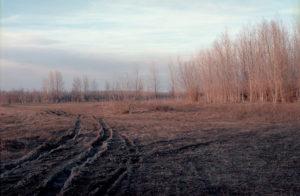 Пример фотографии на фотоплёнку Kodak Ektar 100. Снято на Olympus OM-4 + Olympus Zuiko Auto-S 50 f/1.8