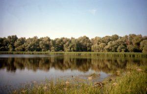 №3 Пример фотографии на фотоплёнку Kodak Portra 160. Снято на Olympus Zoom.